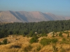 Tannourine National Park looking to Hadath-a -Jibbih
