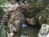 water-hole-spring-1